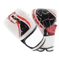 Martial arts New Fashion real leather boxing gloves for training