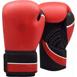 Champion boxing gloves leather