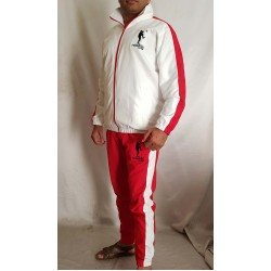 cheap custom design sports tracksuits Jacket Windproof microfiber suit tracksuit with NO MOQ